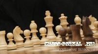 Гарри Каспаровым vs Бельгийский школьников